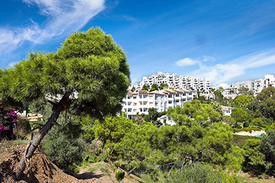 Bargain Property Costa del Sol